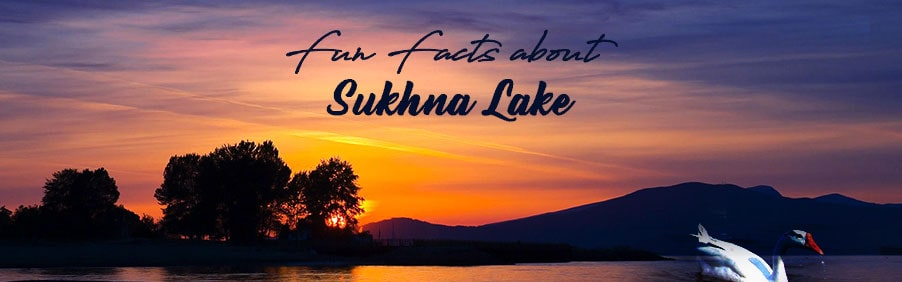 Fun Facts You Did Not Know About Sukhna Lake